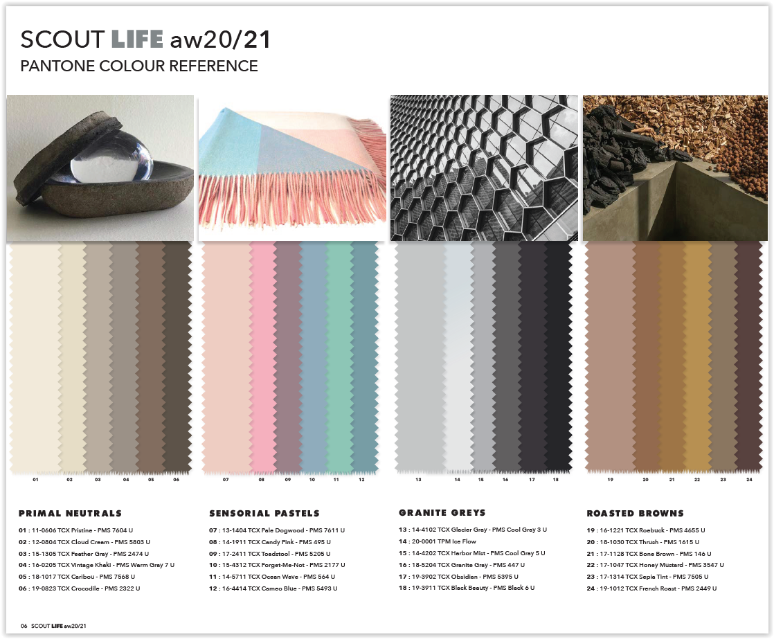 appletizer scout life color concept a w 2020 2021 on house colors for 2021 id=67445