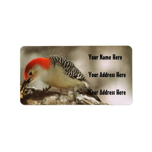 This Deals Red Bellied Woodpecker Address Label online after you search a lot for where to buy