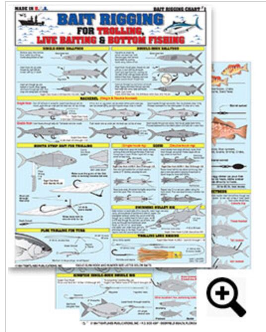 Pin On Bait Rigging And Knot Tying Charts