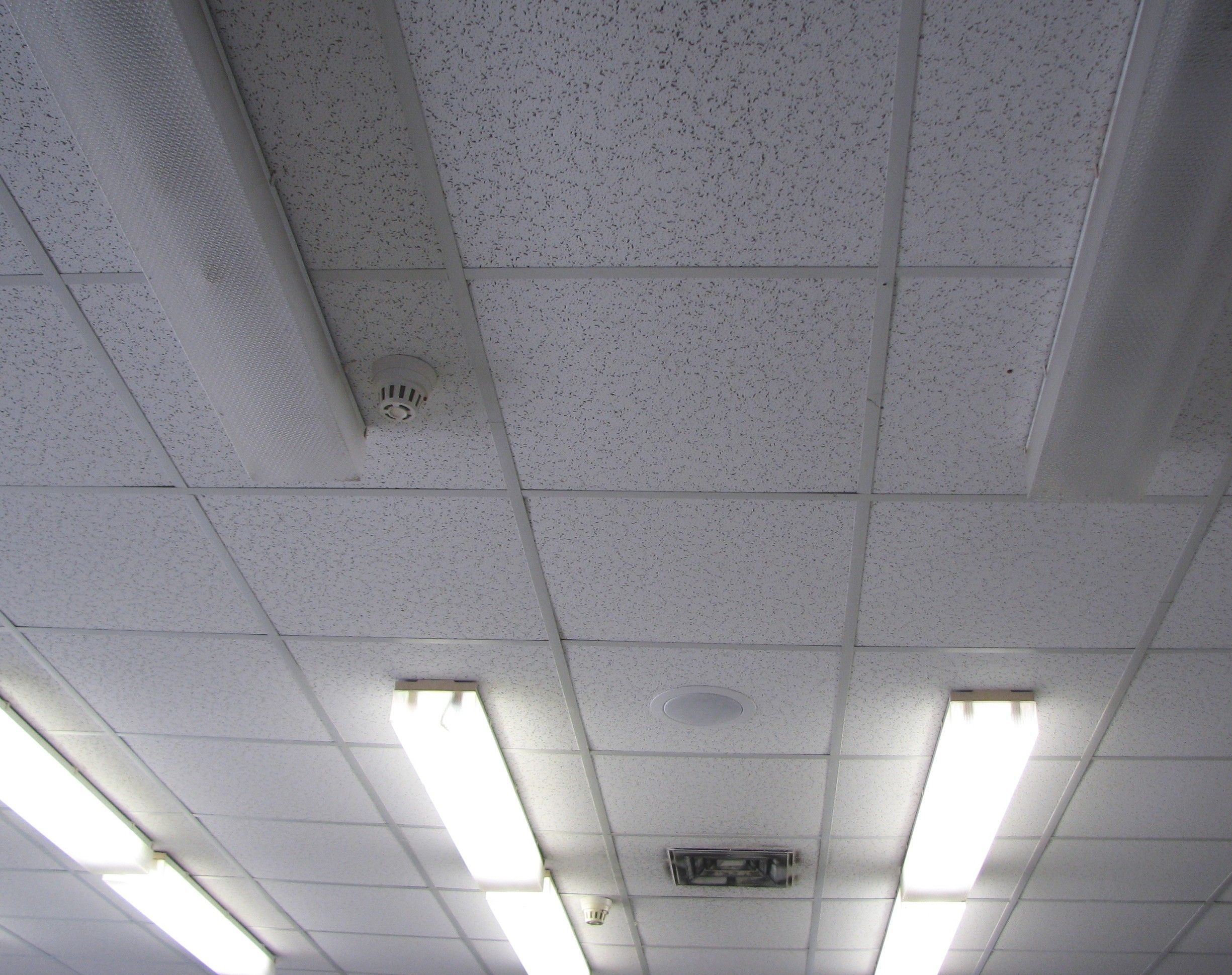 Types of ceiling lights for office http types of ceiling lights for office mozeypictures Gallery