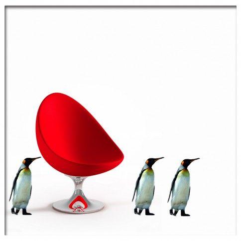 Muursticker  pinguin penquin