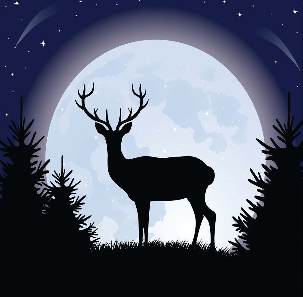 Midnight Stag Christmas Card - Dramatic Silhouette in Moonlight - fast free post