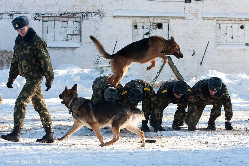 Belarus border guard training