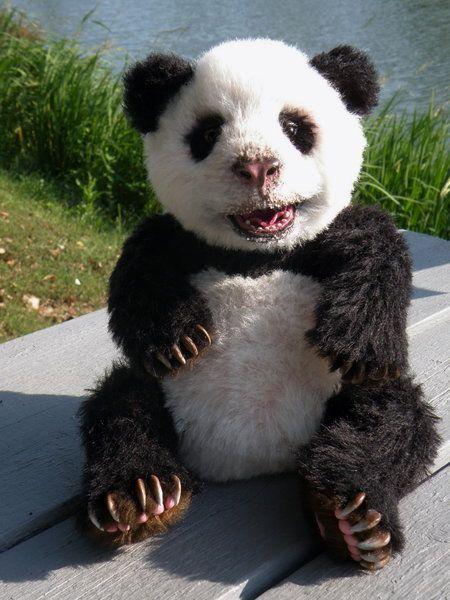 Baby panda Niu by Olga Shuklina #babypandas