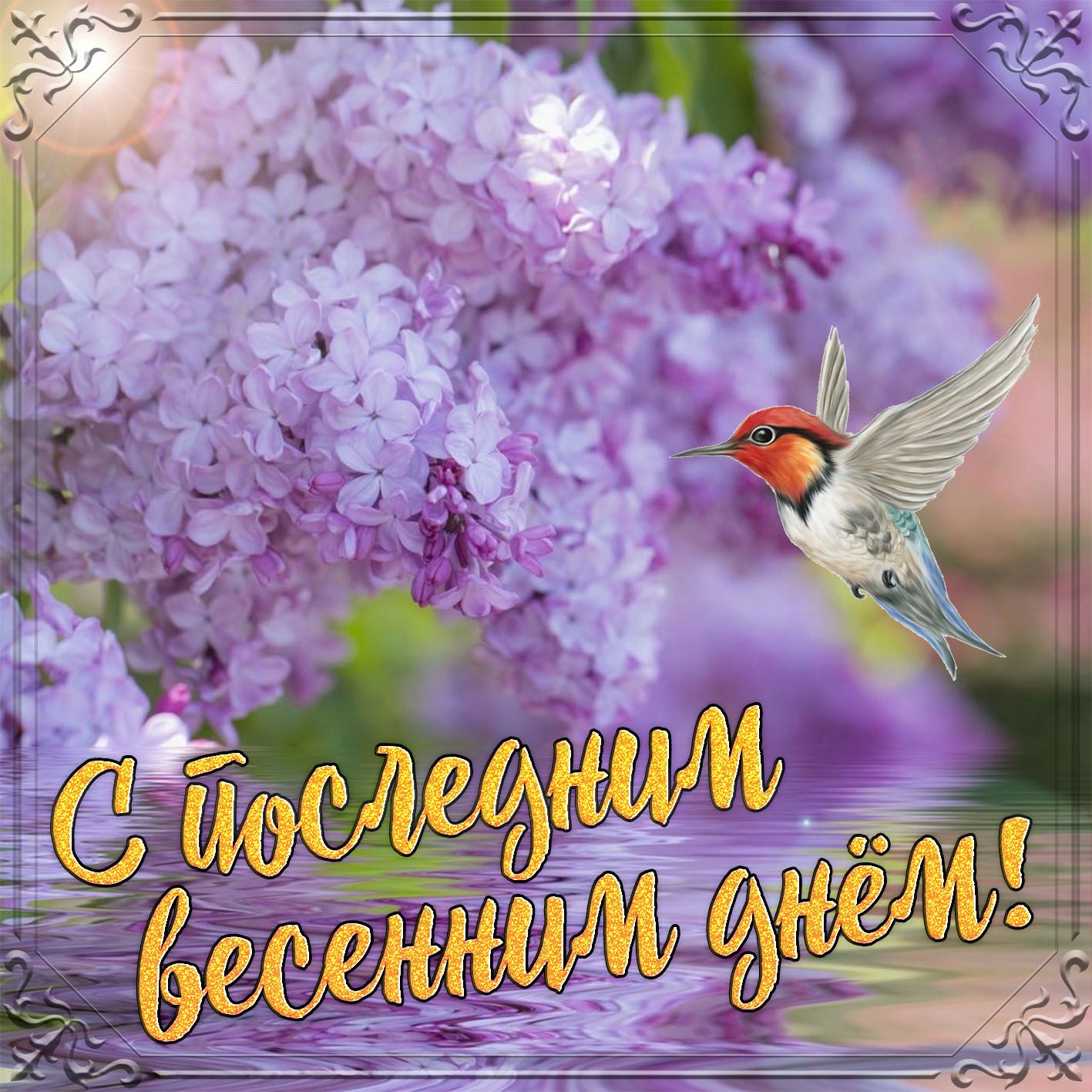 Картинка с птичкой в последний день весны в 2020 г | Весна ...