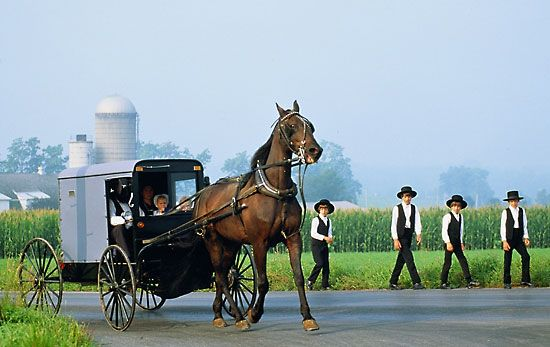 Amish | Catholic Bishops Cry Foul: Amish Are Exempt From Obamacare But ...
