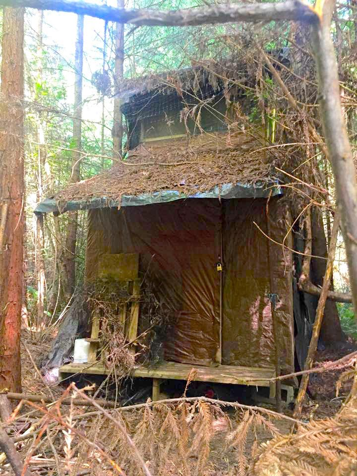 Awesome Viva La Tiny House Revolution Mad River Mystery Cabin - Amazing house built across a river