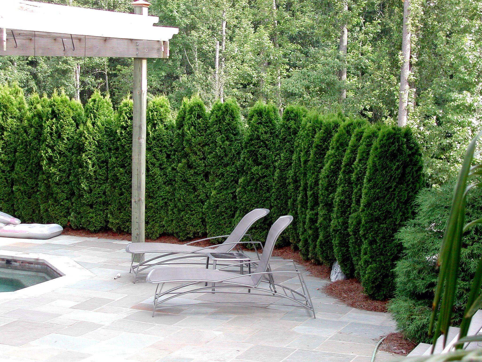 Pin by sandy persons on landscape pinterest landscaping