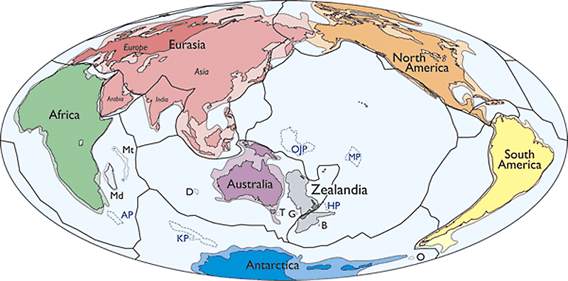 Zealandia, shown in gray to the east of Australia, is likely Earth's seventh geologic continent