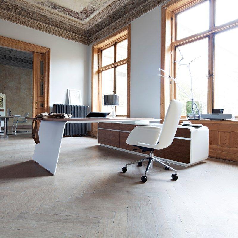 Executive Office Design: Office Furniture