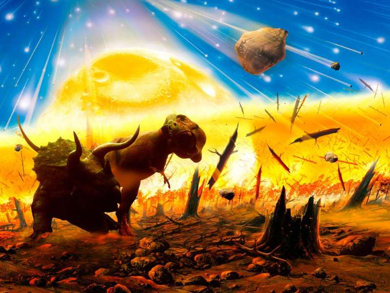 What are mass extinctions, and what causes them? in 2020