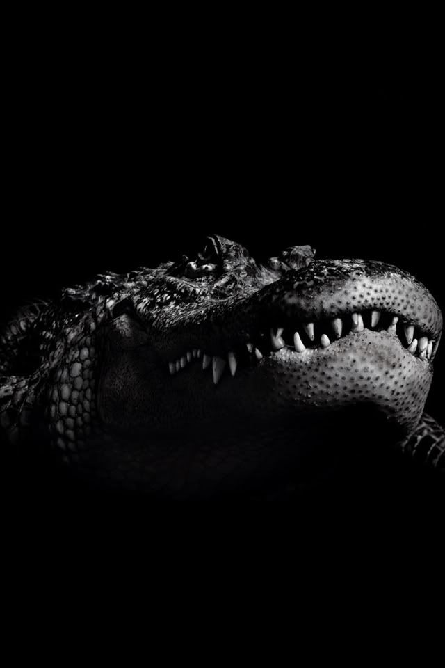 coc animal smile of teeth on black color background iPhone