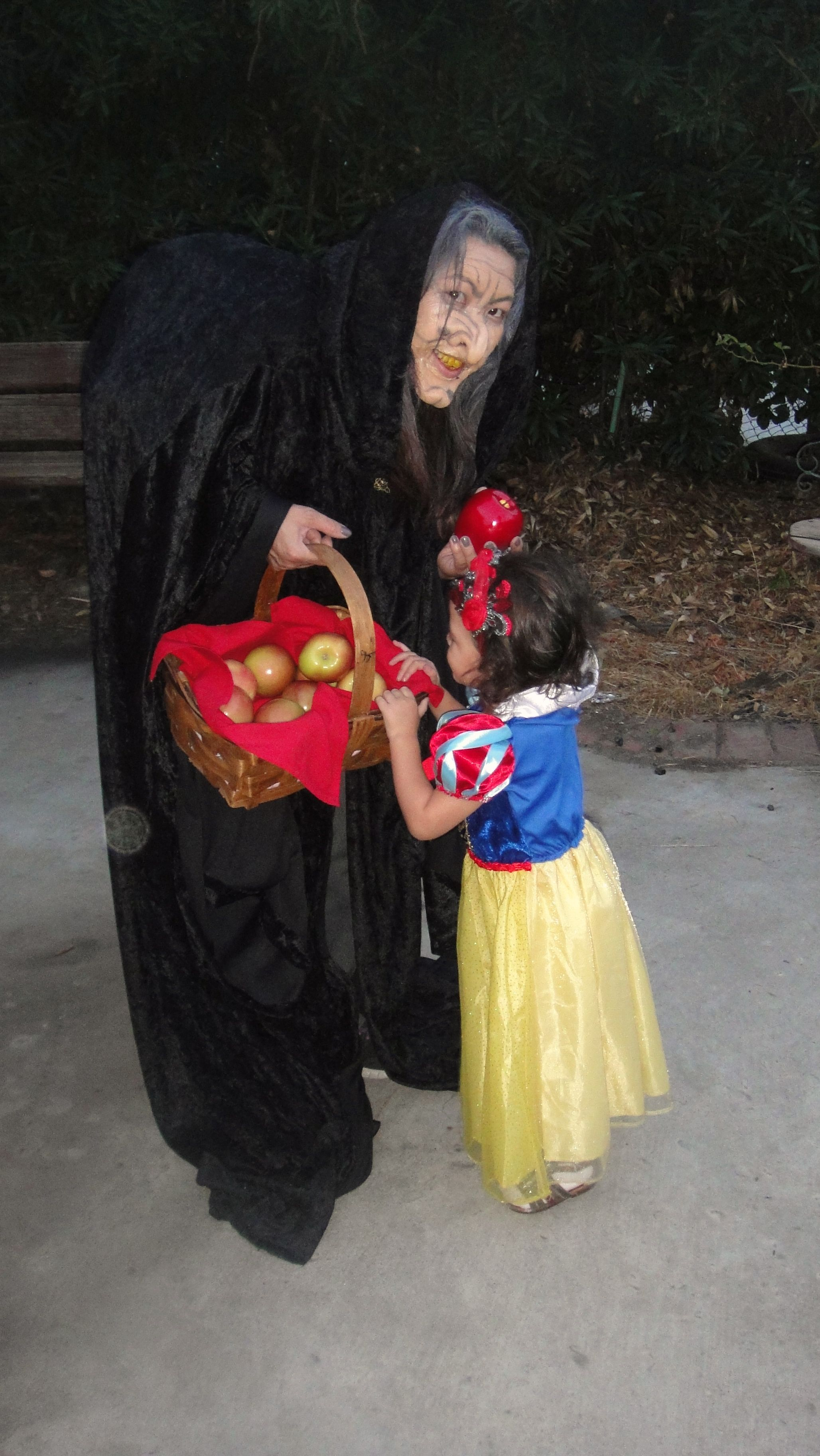 Snow White and the Evil Queen/Witch Costume | Costumes | Pinterest ...