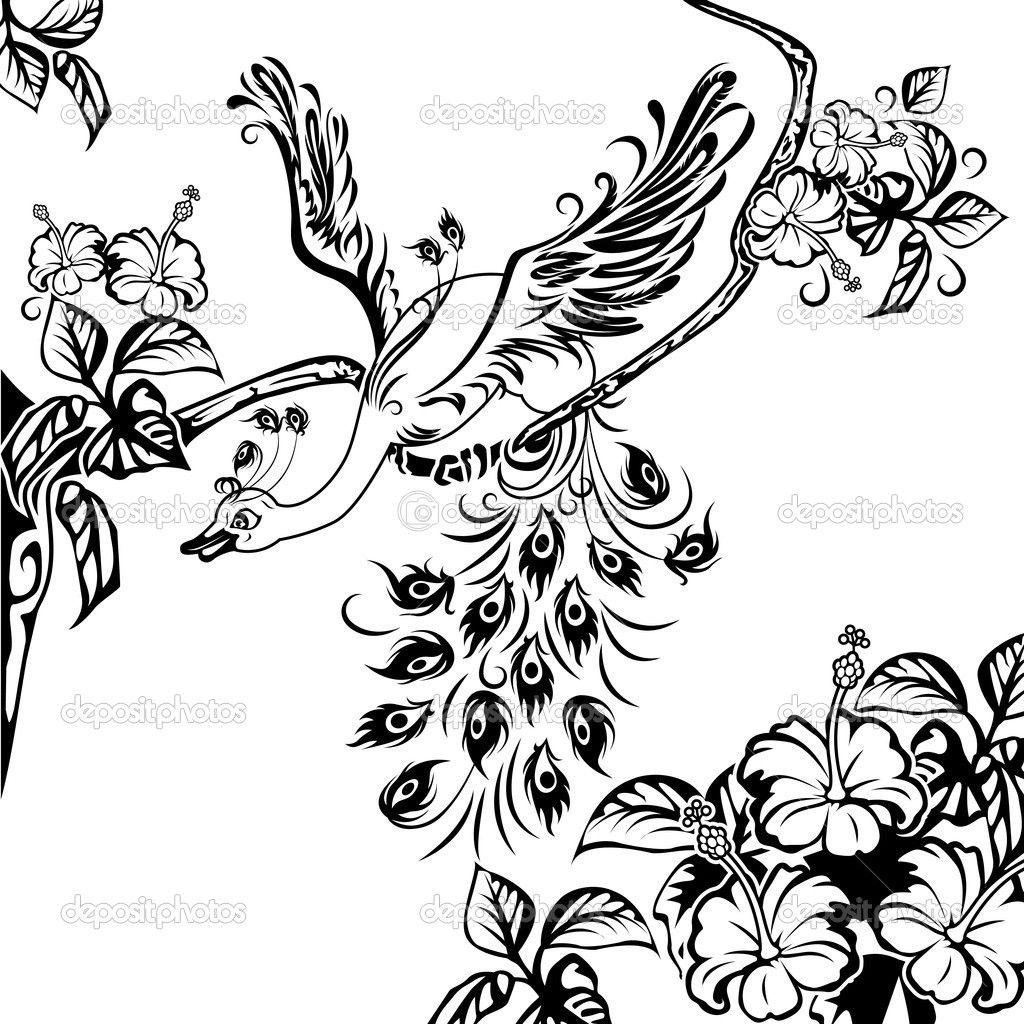 Павлин на ветке дерева - Стоковая иллюстрация: 8289080