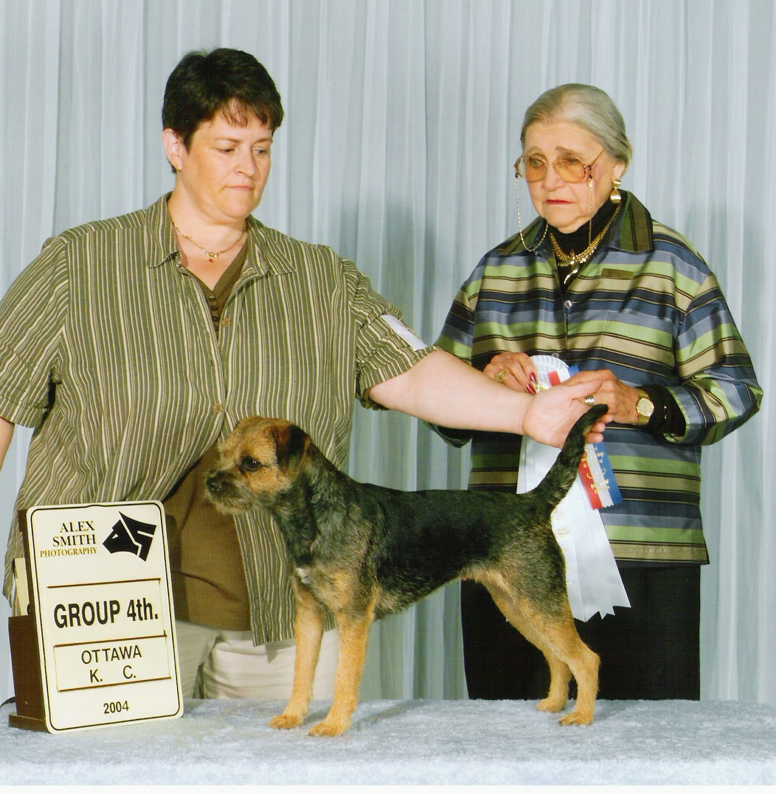 Ottawa 2004 Border Terrier Fci Group 3 Terriers Border