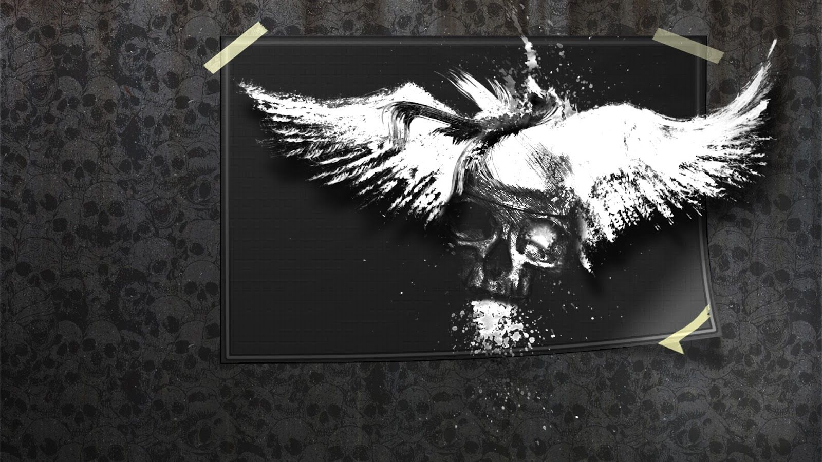 Abstract Art Black And White Animal Wallpaper Free