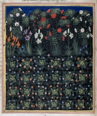 Detail of a miniature of a garden or flowery field referring to 'Prato'. Image taken from f. 15v of Address in verse to Robert of Anjou, King of Naples, from the town of Prato in Tuscany (the 'Regi...