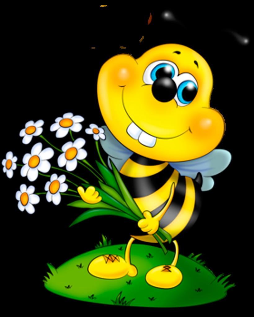 Самые красивые картинки пчелки