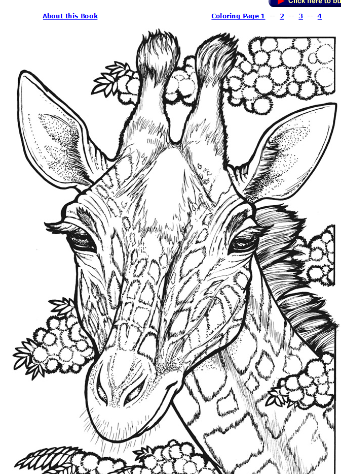 Welcome to Dover Publications⭕️✖️More Pins Like This One At #FOSTERGINGER @ Pinterest✖️⭕️