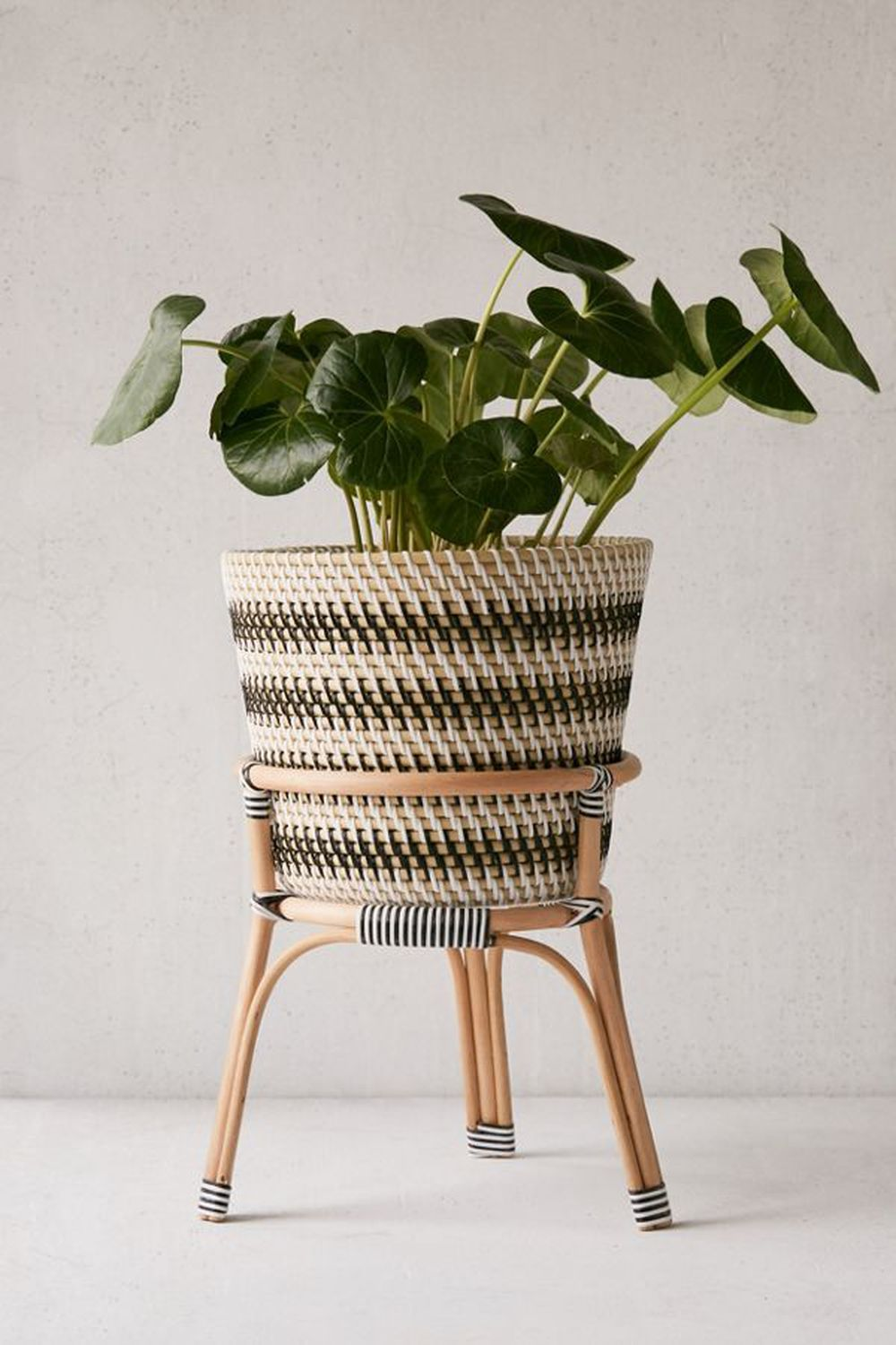 15 irresistible planters for your greenery