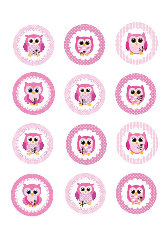 Pink Owls edible cupcake toppers 12x2 inch rounds by ...