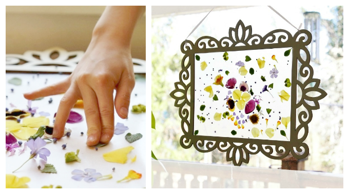 Make a beautiful flower petal contact paper suncatcher in a decorative wooden frame that can be reused for other contact paper suncatchers (ideas included).