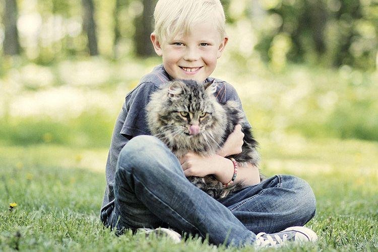 Me MUSCHilla tiedämme, että jokaisella kissalla on ruokinnan suhteen yksilölliset tarpeet.