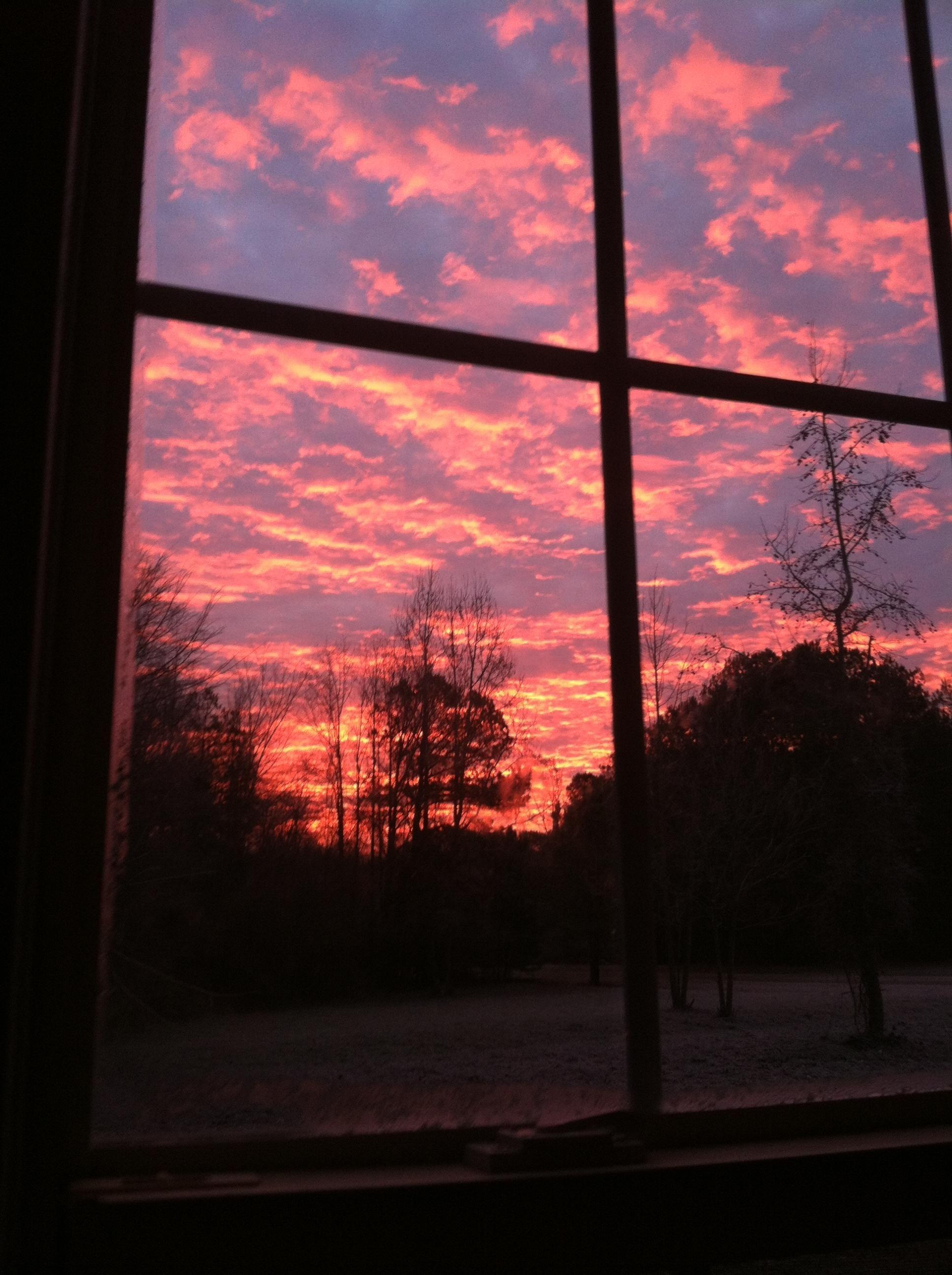 патрик картинки вид из окна на закате начала