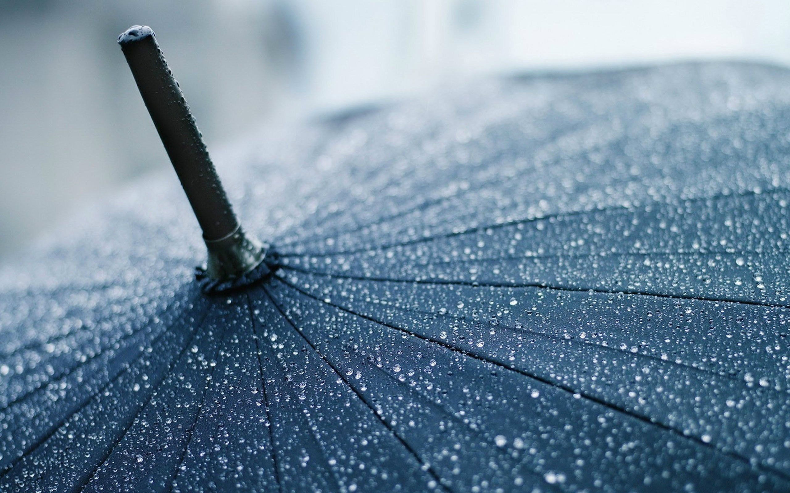 Photography Hd Wallpapers Hd Widescreen Wallpapers High Rain Wallpapers Rain Photography Amazing Photography Wallpaper