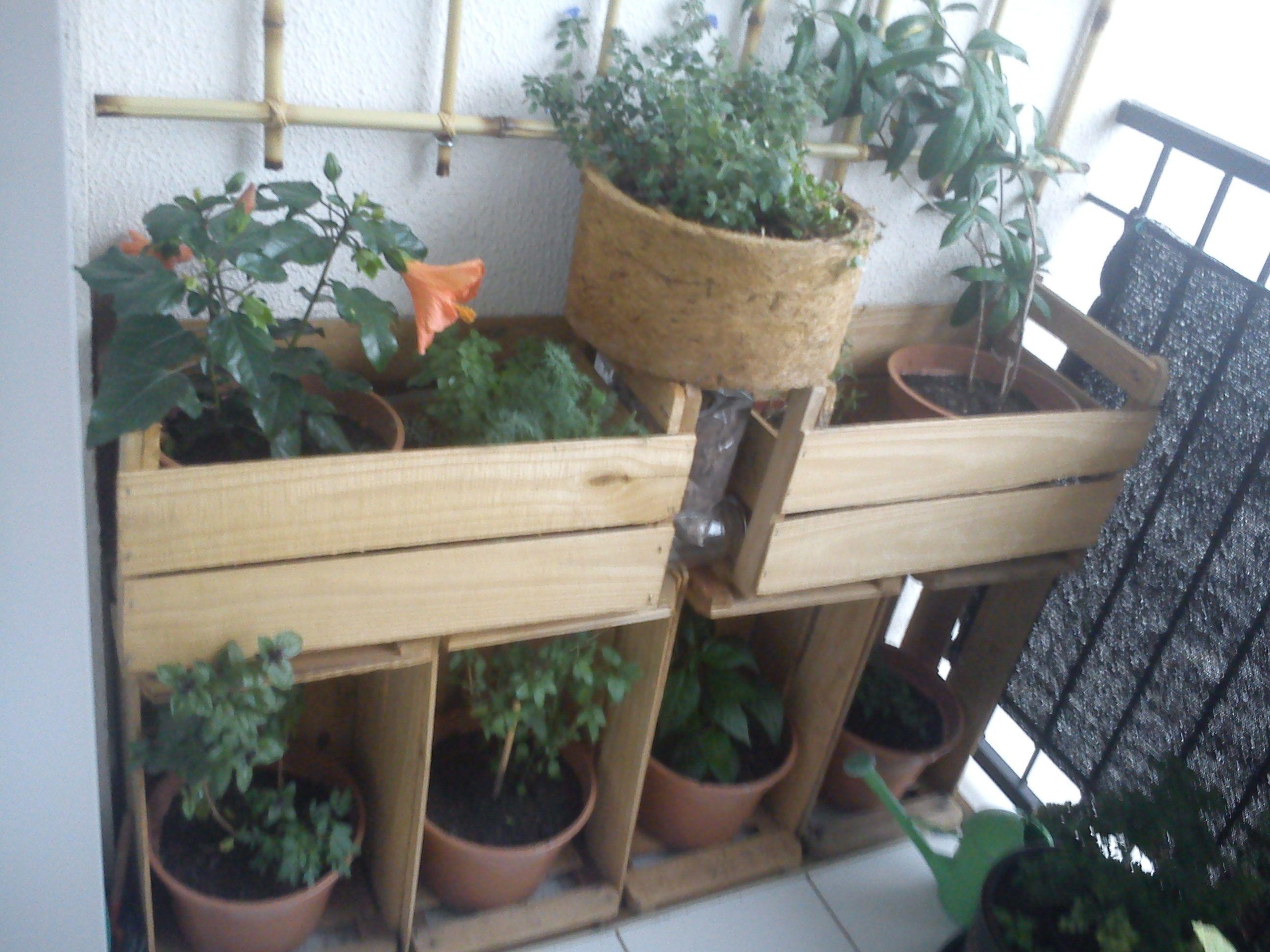 Sacadas Pequenas Horta E Floreira Em Caixotes Utiliza Se