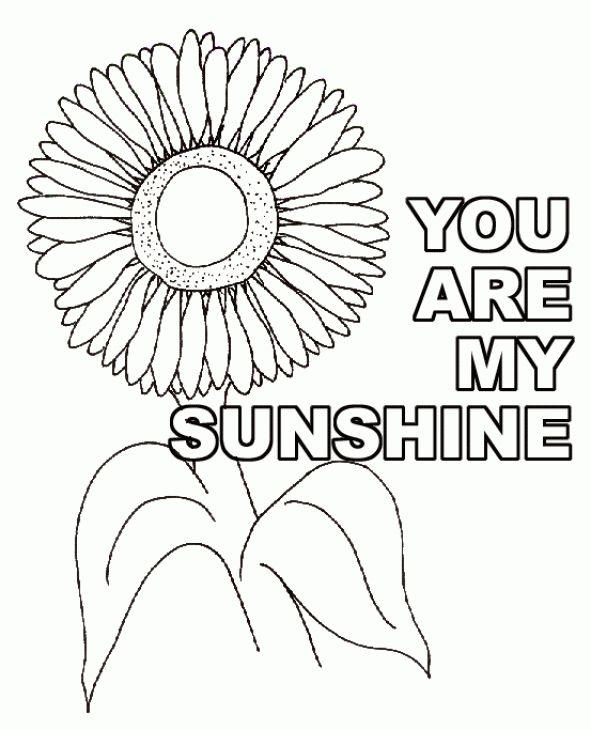 You Are My Sunshine Sunflower Coloring Page 591x730