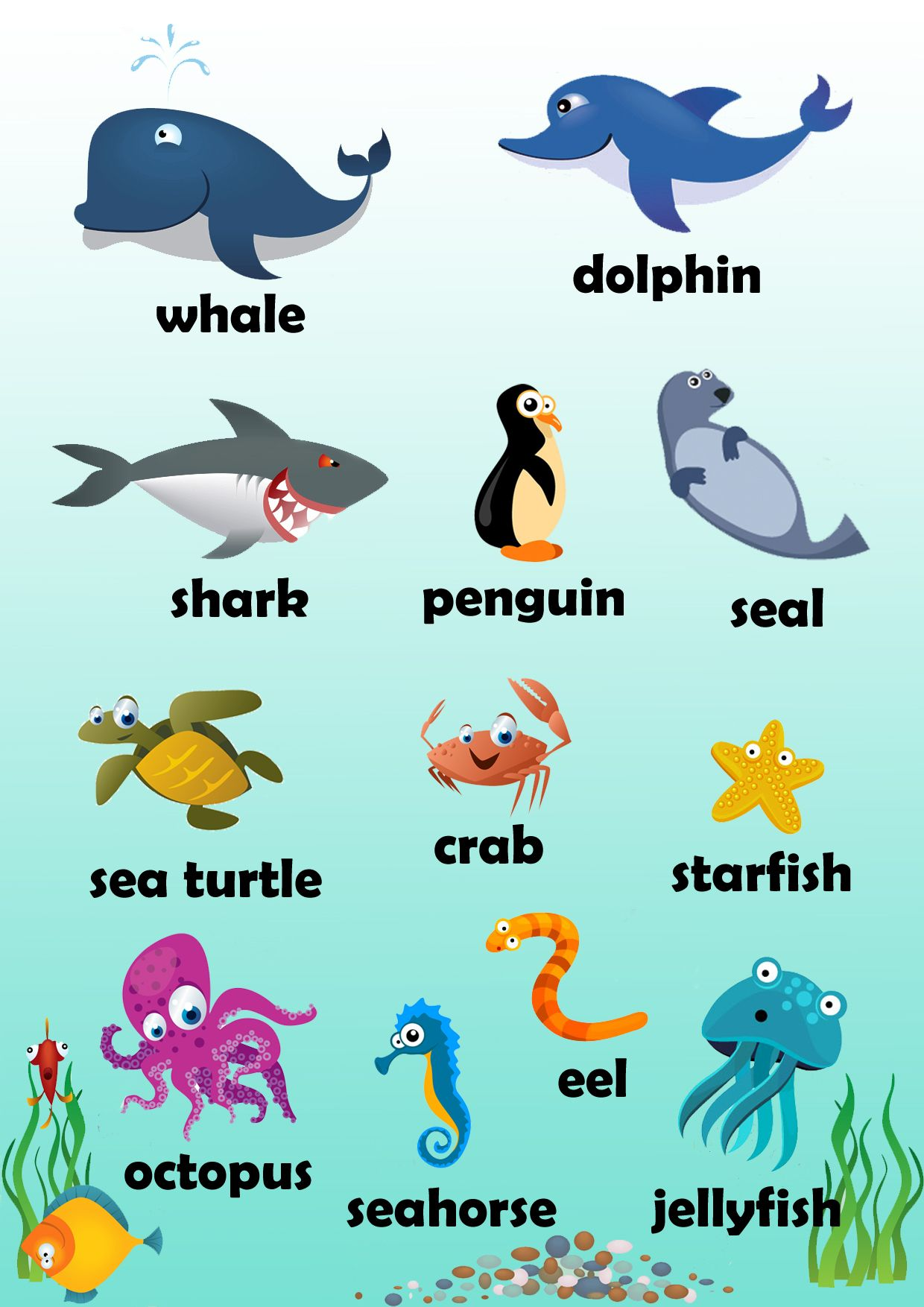 marine animals poster i created from available clipart enjoy  [ 1240 x 1754 Pixel ]
