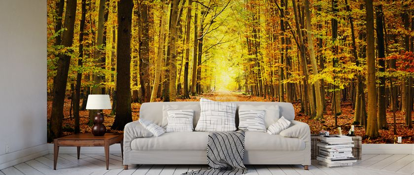 Stunning woodland feature wallpaper in living room by ohpopsi.com ...