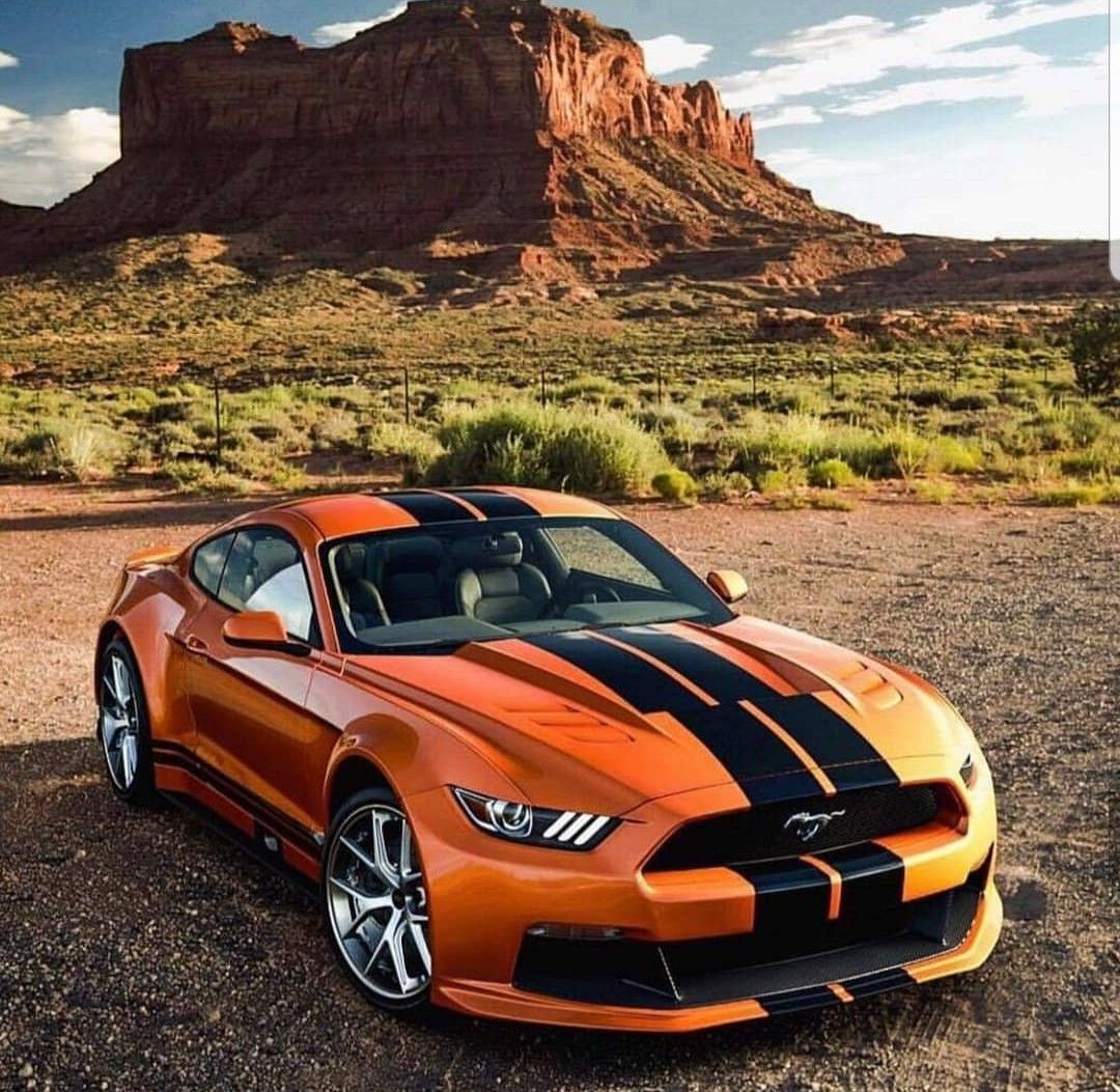 Pin by Ray Wilkins on Mustang in 2020 Car inspiration