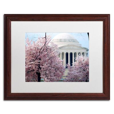 """Trademark Art 'Cherry Blossoms 2014-7' by CATeyes Framed Photographic Print Size: 16"""" H x 20"""" W"""