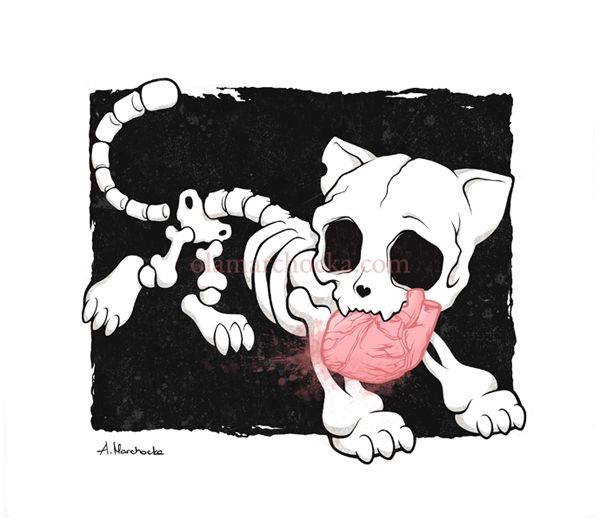 cute cat skeleton Google Image Result for http://www ...