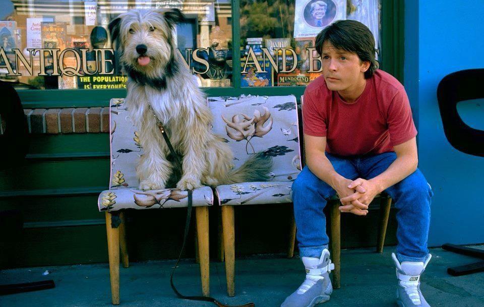 Einstein and Marty