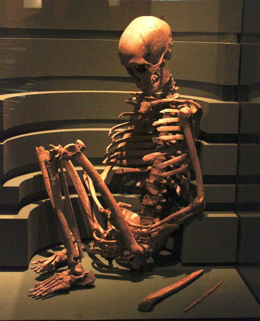 sitting+skeleton | Sitting Skeleton by Digimaree | funny in