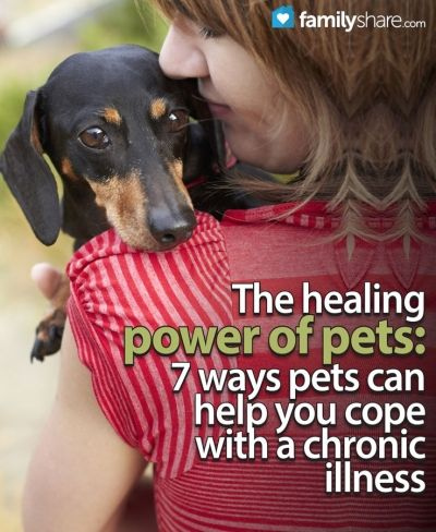 FamilyShare.com | The healing power of pets: 7 ways pets can help you cope with a chronic illness