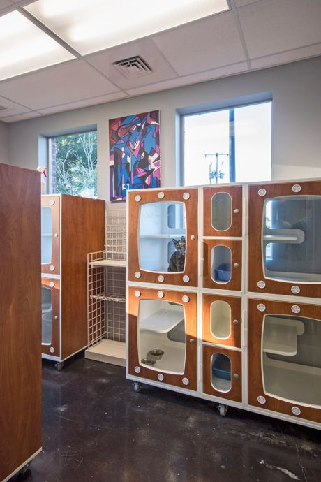 Shor Line Cat Condos In Country Club Veterinary Clinic
