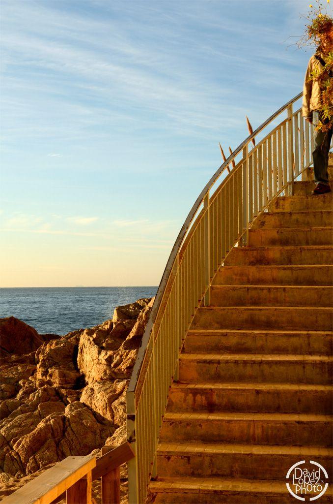 Título: El hombre floral. Un encuadre; escaleras, rocas, mar, cielo ...
