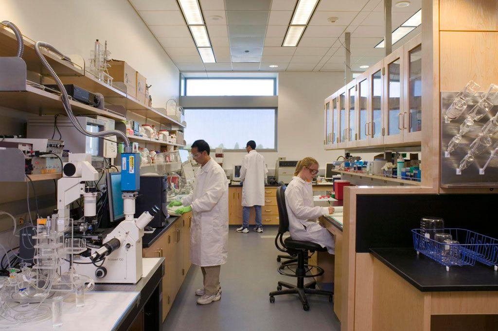 Biomedical Engineer Partner