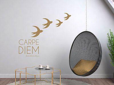 Details zu Wandtattoo Wanddeko für Wohnzimmer Carpe Diem Vögel - wandtattoos für wohnzimmer