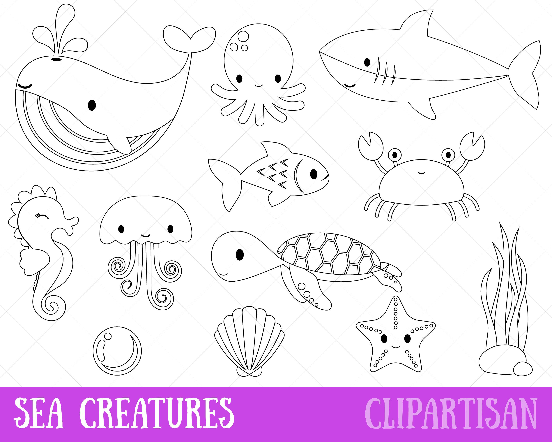 Clipart De Creatures De Mer