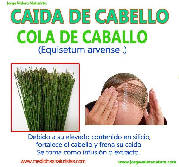 Tratamientos buenos para la caida del cabello