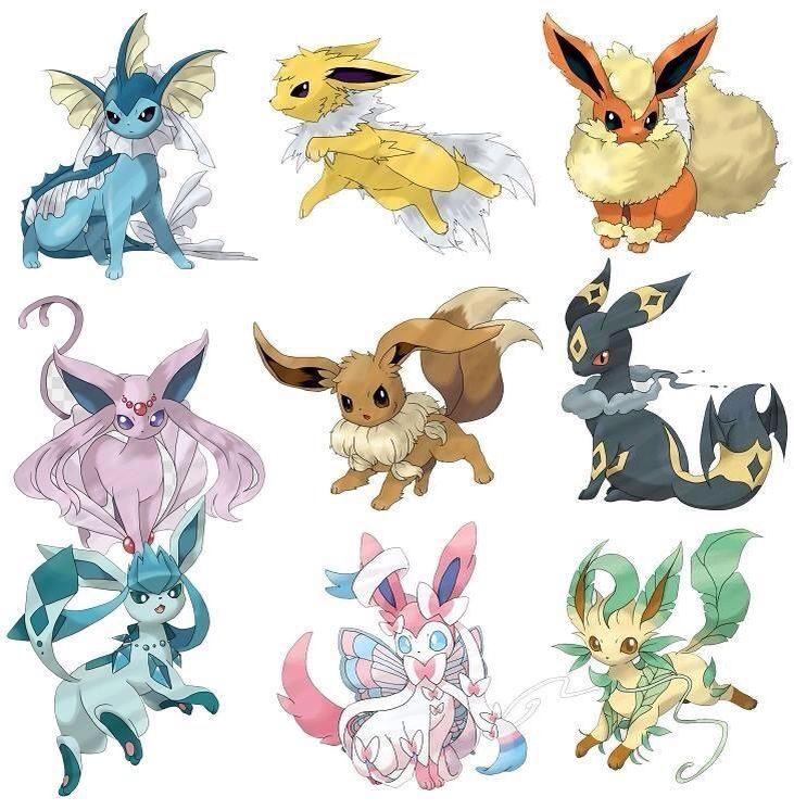 Eevee mega evolutions pokemon forever pinterest evolution and also rh