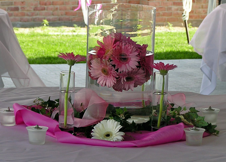 Gerber daisy wedding ideas view our photobook of decorations and gerber daisy wedding ideas view our photobook of decorations and centerpiece for your wedding junglespirit Choice Image