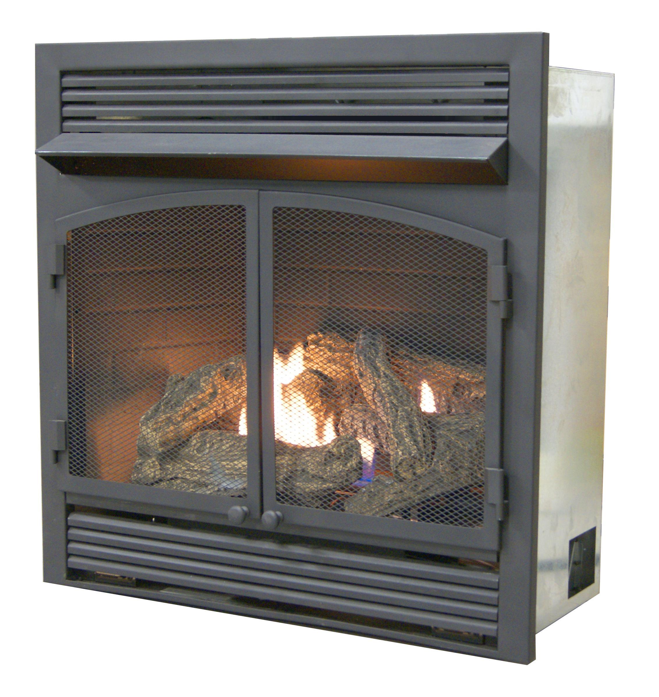 Dual Fuel Fireplace Insert Zero Clearance 32 000 Btu Fireplace