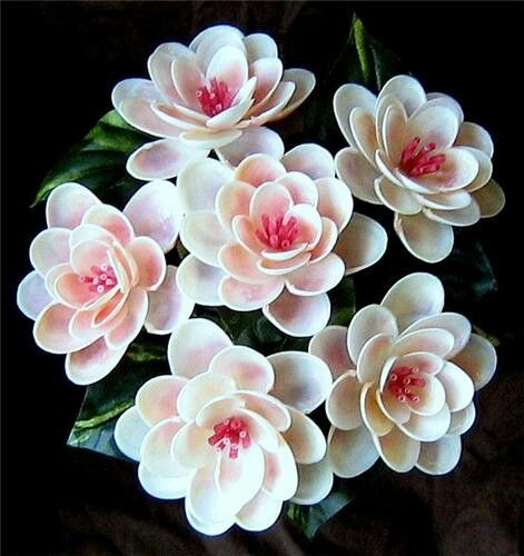 sea shell flowers seaside garden pinterest coquillages bouquet de coquillage et travaux. Black Bedroom Furniture Sets. Home Design Ideas