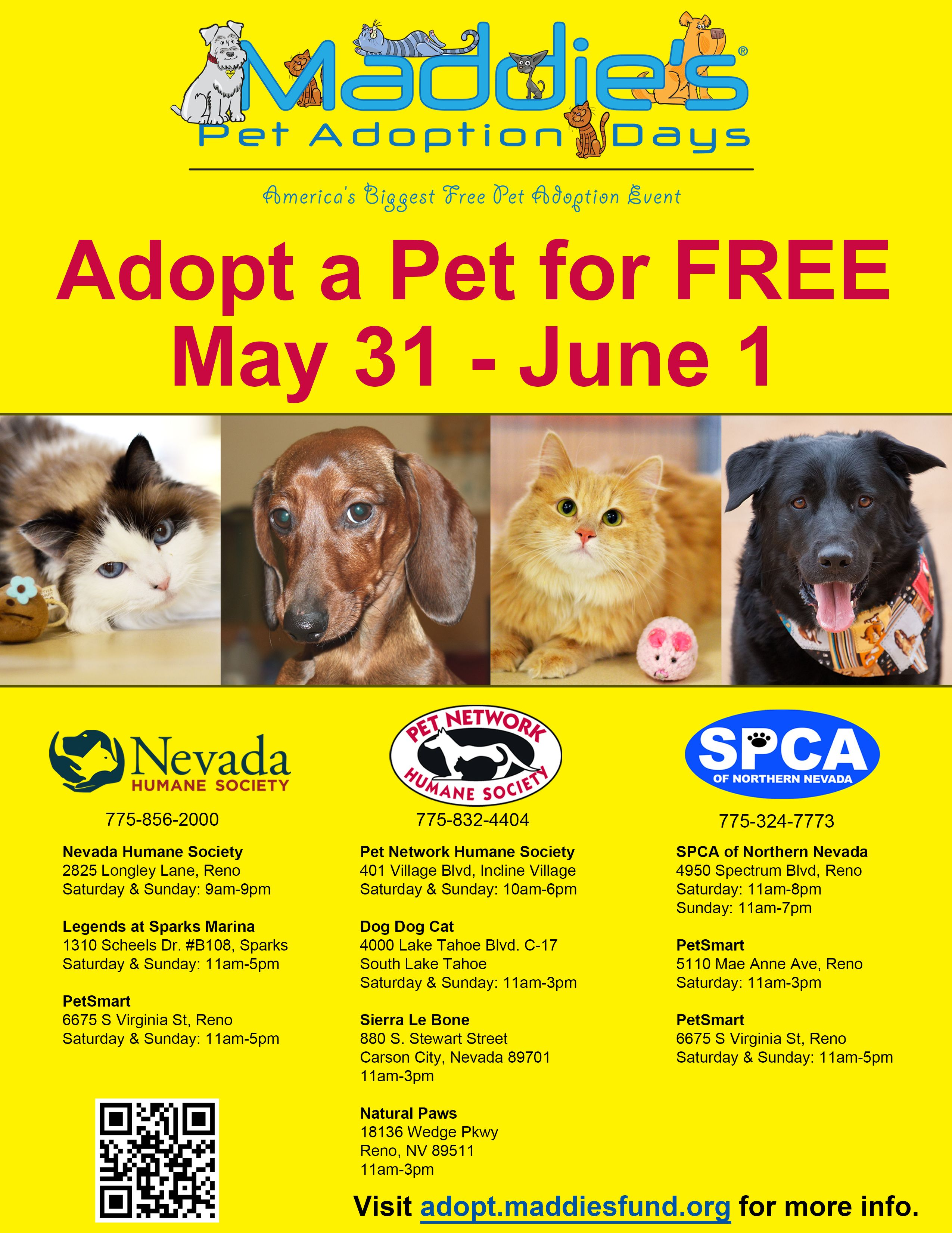 America s biggest free pet adoption event Looking for a new buddy